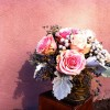 Cabbage Roses, Berzillia berry, Dusty Miller